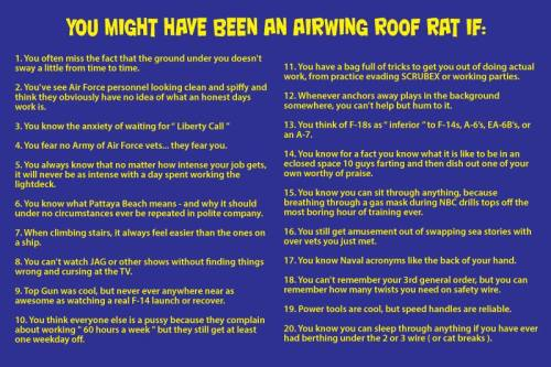 you might have been an air wing roof rat if