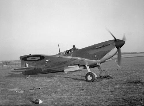 spitfire-ch_001447